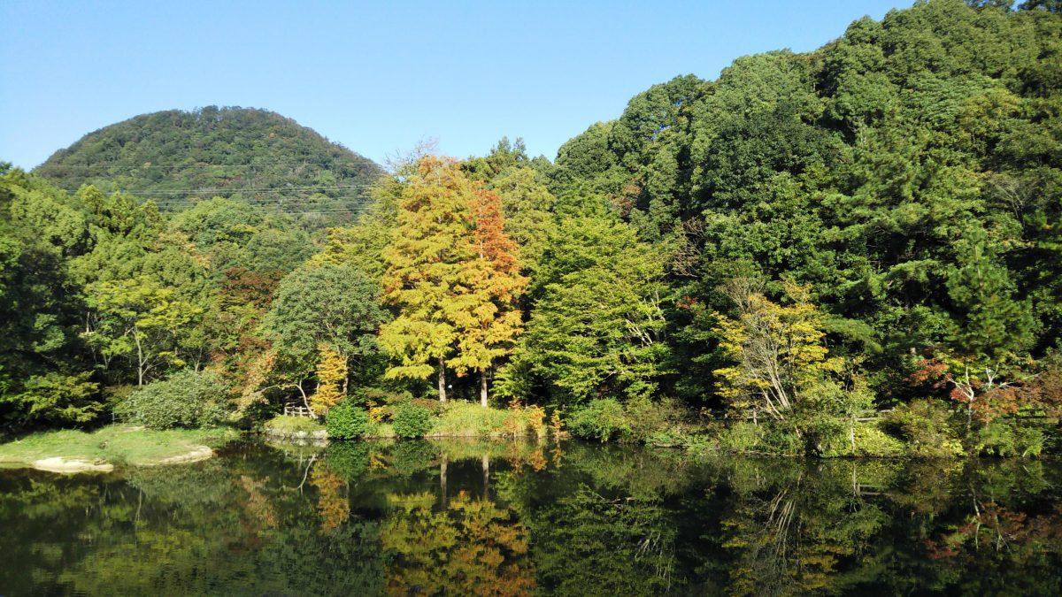 みくるま池の紅葉の状況